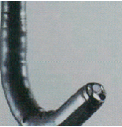 EG-L600ZW7 GASTROSCÓPIO